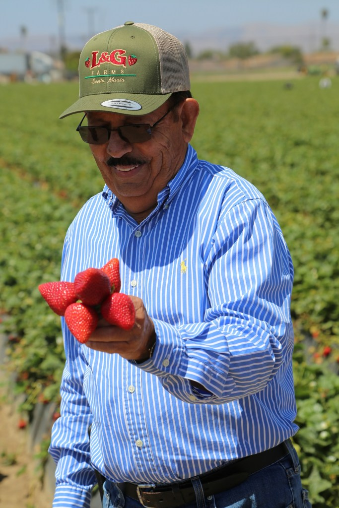 Luis Chavez with Strawberries