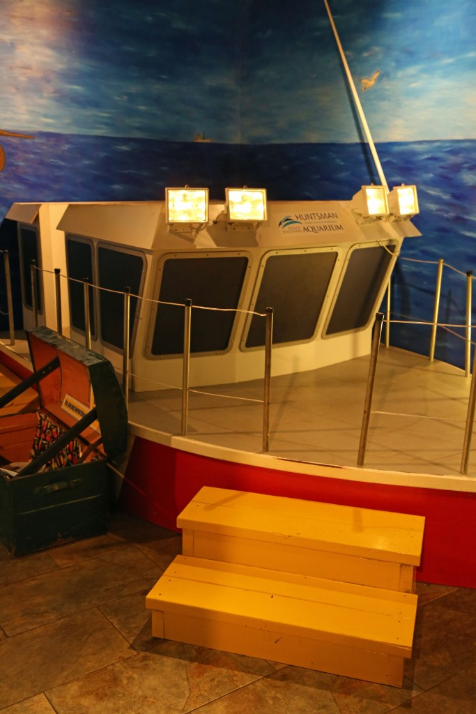Kids area at the Fundy Aquarium