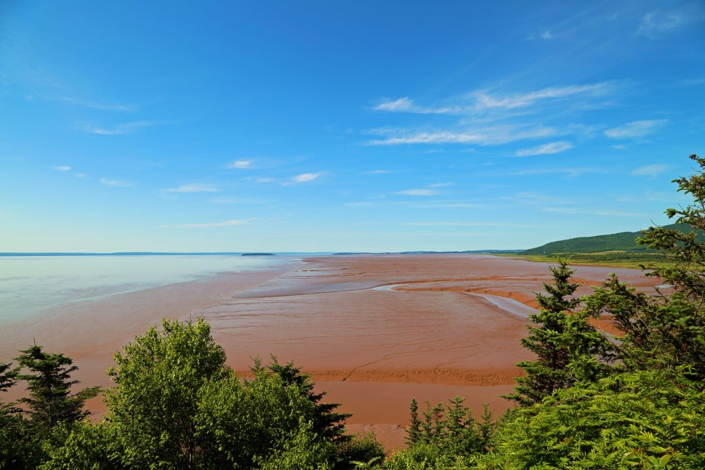 Looking out at the bay Hopewell Rocks