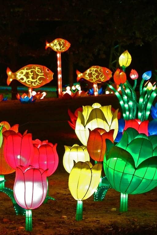 flowers-and-fish-Chinese-Lantern-festival-Spokane.jpg
