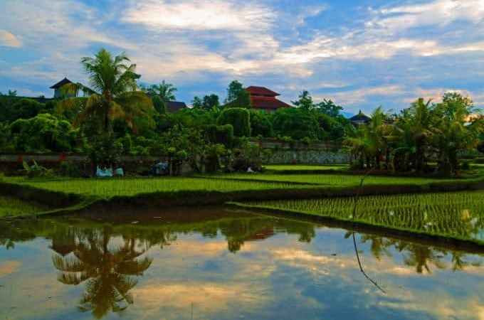 Aniniraka Resort and Spa in Ubud Bali