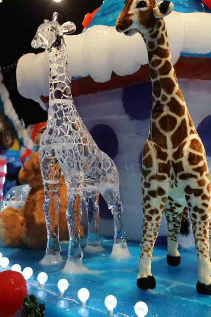 Ice at the Gaylord Texan 998