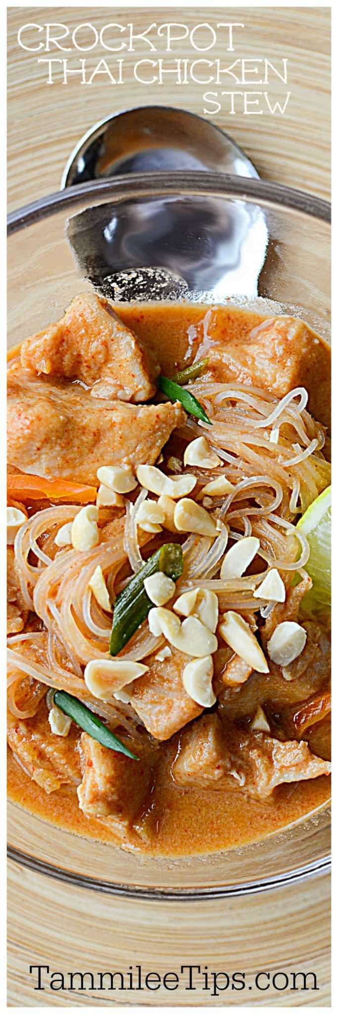 Crock Pot Thai Chicken Stew Recipe! Let the slow cooker do all the work and you get this great soup recipe with tons of flavor! Makes great leftovers!