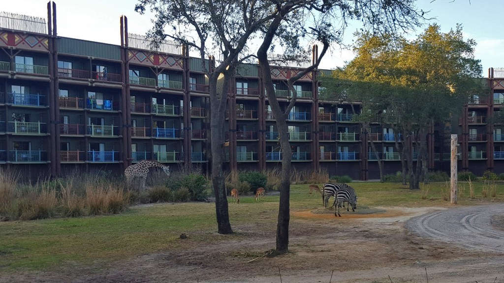 Animal Kingdom Lodge Overview