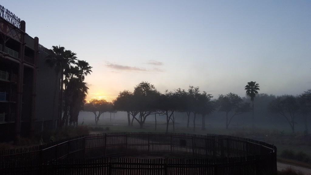 animal kingdom lodge sunrise
