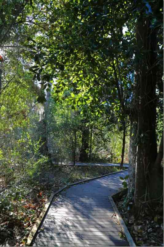 Hiking path at the Naval Live Oaks area of Gulf Islands National Seashore