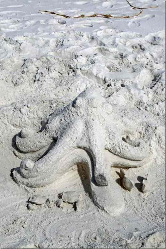 octapus sand art at Gulf Shores National Seashore