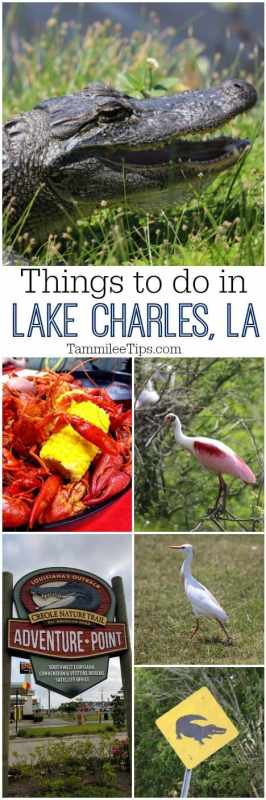 Great things to do in Lake Charles, Louisiana! Festivals, Mardi Gras, Boudin, Bird watching, alligators, and so much more!