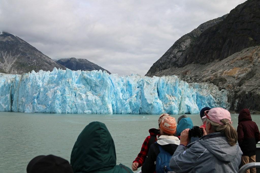 Glacier Tour in Tracy Arm Fjod