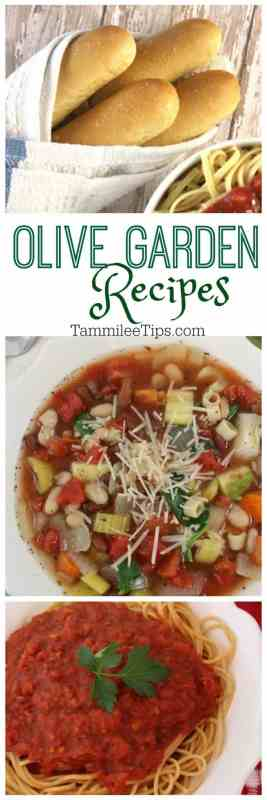 CopyCat Olive Garden Soup, Breadsticks, Marinara Sauce and more recipes!
