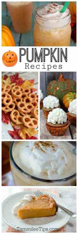 Pumpkin Recipes you will want to try! From Pumpkin appetizers to Pumpkin Spice Frappucchinos and Pumpkin Spice Lattes we have a recipe for you