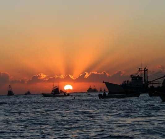 Cabo San Lucas Cruise Guide