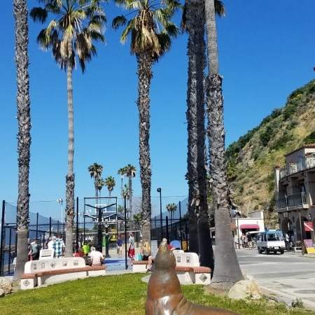 Catalina Island by Cruise Ship Guide