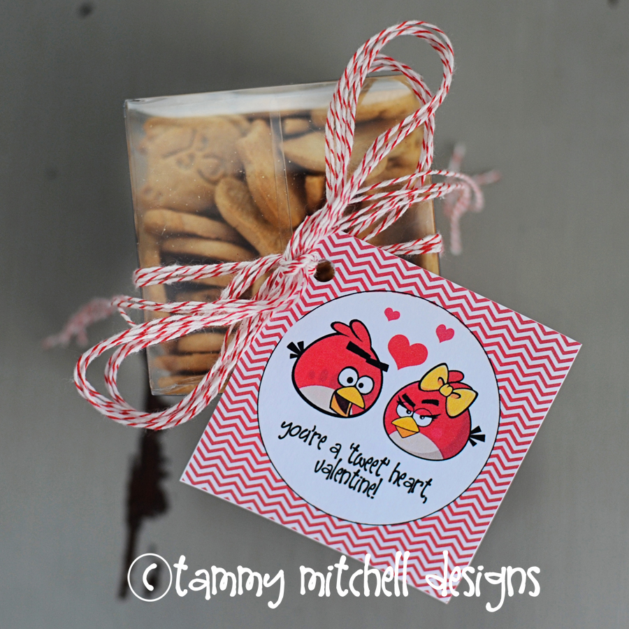 """You're a Tweet Heart, Valentine!"" Gift (Free Printable Card) by Tammy Mitchell"