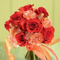 Crimson Serenade from Tammys Floral