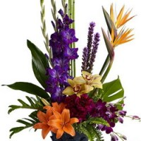 Paradise Blooms from Tammys Floral