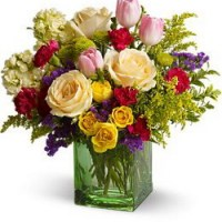 Spring Time Harmony from Tammys Floral