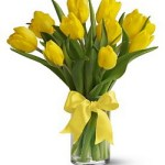 Sunny Yellow Tulips from Tammys Floral