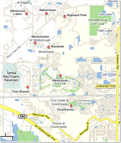 Westcahse Homes For Sale Westchase FL Real Estate