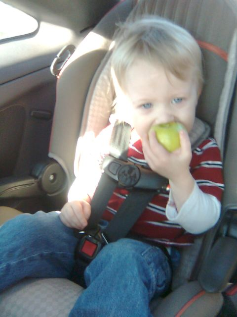 lennys-apple