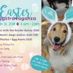 Doggie Easter Egg Hunt & Photos With the Easter Bunny, March 31st