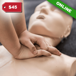 BLS CPR ON-LINE CLASS