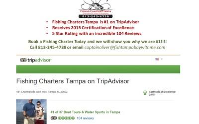 Tampa Fishing Charters, Inc. is #1 on TripAdvisor
