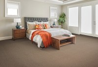 Carpet Trends 2017 - Tampa Flooring Company