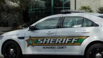 hernando county sheriff office