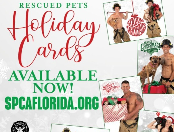 lakeland rescued pets firefighters
