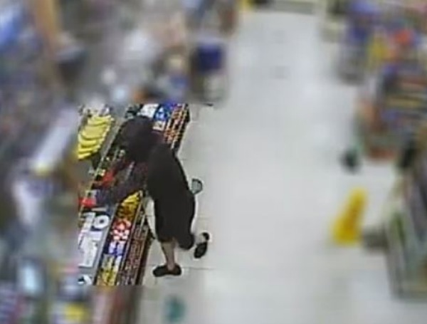 tampa robbery suspect