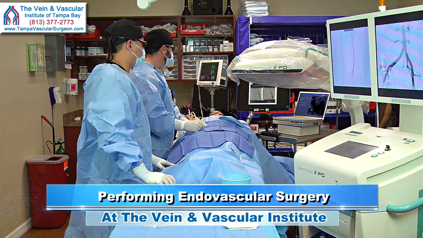 Outpatient Vascular Surgery Tampa