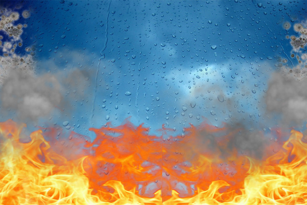 Contact Us  Tampa Water Mold Fire  Smoke Damage Repair