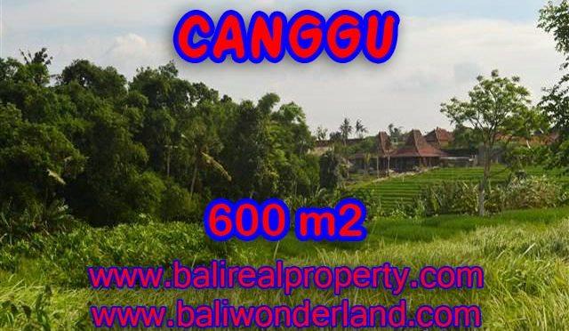 INVESTASI PROPERTI DI BALI - TANAH DI CANGGU BALI DIJUAL CUMA RP 4.250.000 / M2