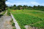 TJCG056 - Land for sale in Canggu Bali 01