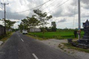 TJCG141 - Tanah dijual ( Land for sale ) di Canggu Bali 16
