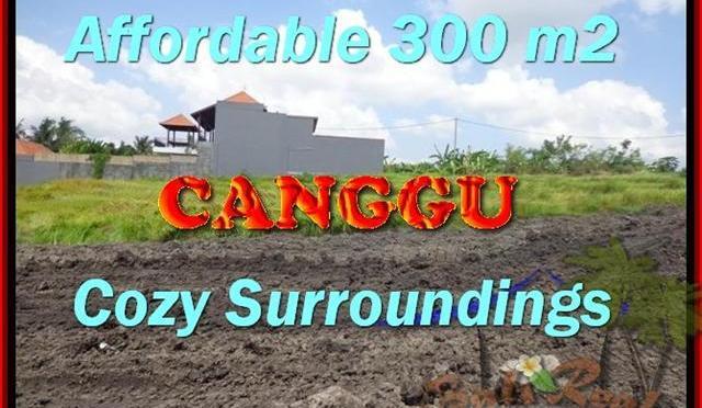 JUAL TANAH di CANGGU BALI 300 m2 di Canggu Pererenan