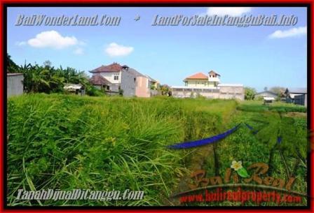 TANAH DIJUAL di CANGGU BALI 770 m2 View Sawah