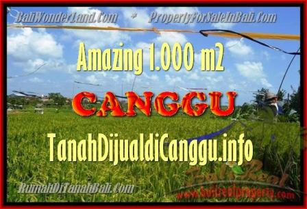 JUAL TANAH di CANGGU 1.000 m2 View Sawah, lingkungan villa