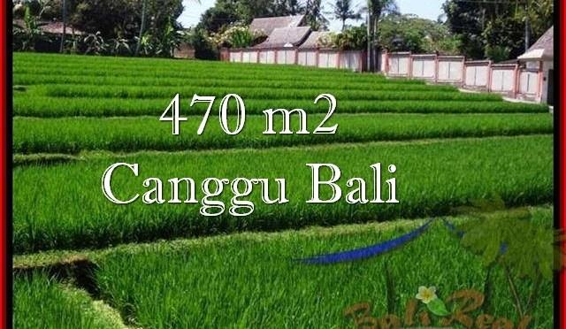 TANAH DIJUAL di CANGGU 4.7 Are View sawah, sungai, lingkungan villa
