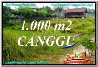 DIJUAL TANAH MURAH di CANGGU BALI Untuk INVESTASI TJCG214