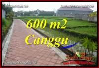 DIJUAL MURAH TANAH di CANGGU TJCG220