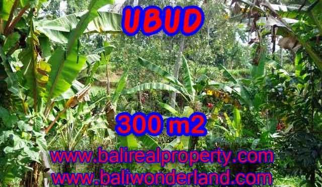 DIJUAL TANAH DI BALI, MURAH DI UBUD RP 3.950.000 / M2 - TJUB415