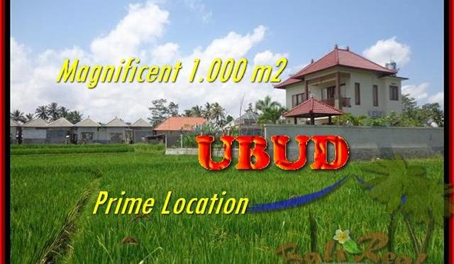 JUAL TANAH MURAH di UBUD 10 Are View sawah link villa