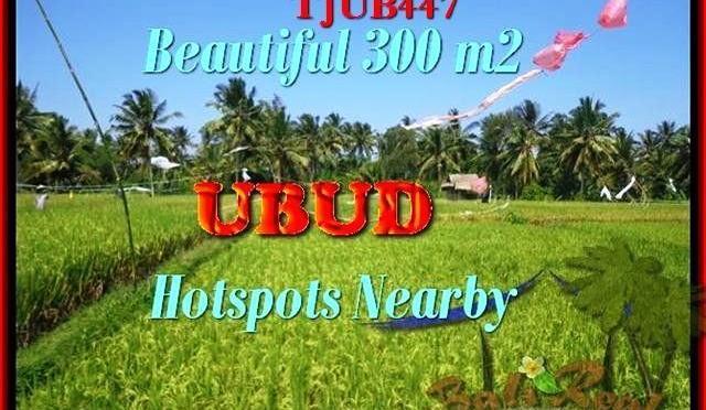 DIJUAL TANAH MURAH di UBUD BALI 3 Are di Sentral Ubud