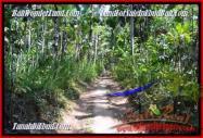 JUAL TANAH MURAH di UBUD BALI 24 Are View Kebun dan tebing