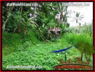 TANAH di UBUD BALI DIJUAL MURAH 20 Are View sawah, sungai dan tebing