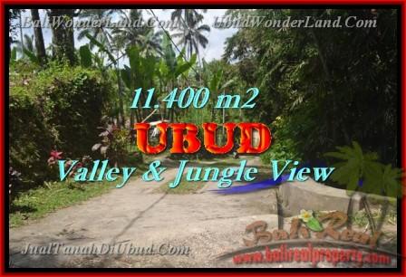 JUAL MURAH TANAH di UBUD 11,400 m2 View hutan dan Tebing