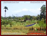 TJUB435 - JUAL TANAH MURAH DI UBUD - LAND FOR SALE IN UBUD BALI 08