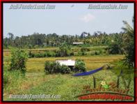 JUAL MURAH TANAH di UBUD 500 m2 View sawah gunung link villa